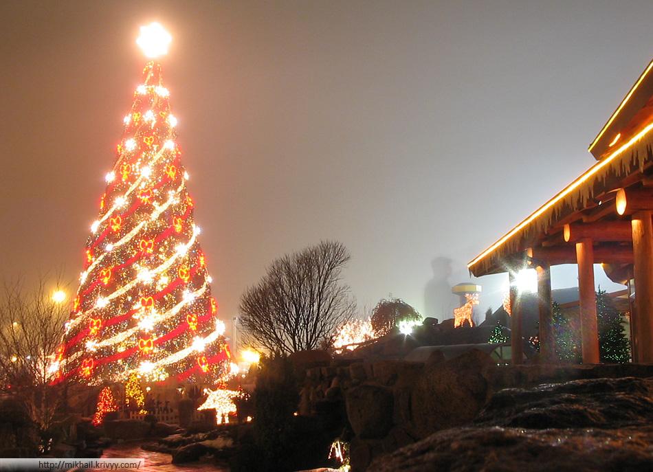 Лидошная елка.