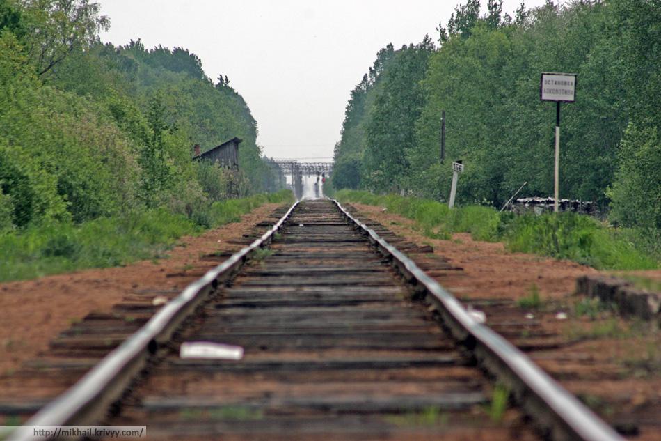 """Типичная станция ветки Великий Новгород - Новолисино - Санкт-Петербург. """"Болотная"""""""