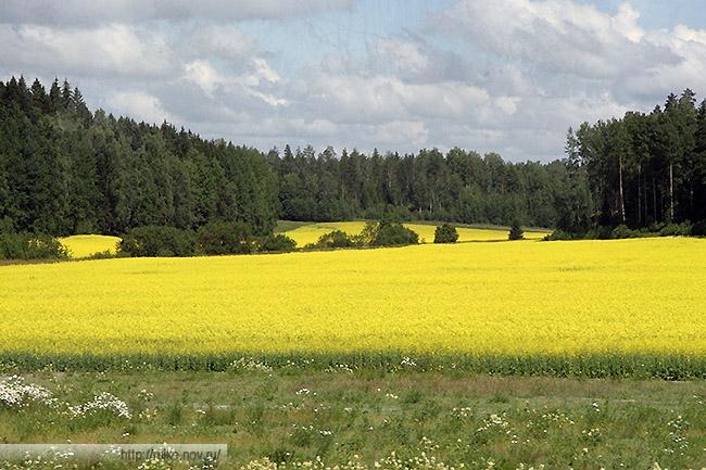 3-finland.jpg