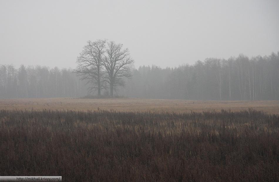 Осенний туман.