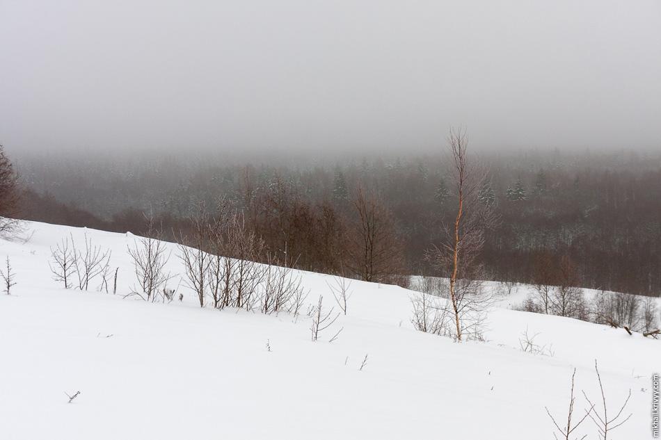 Путь к вершине был не самым легким. Снега по пояс.