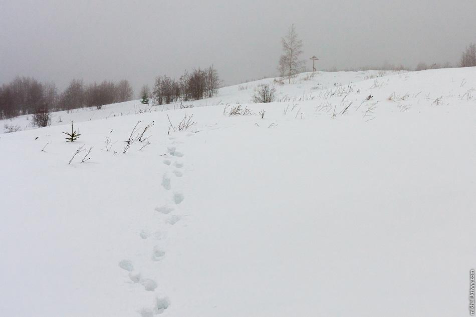 На 300 метров от дороги до вершины ушло более полу часа.