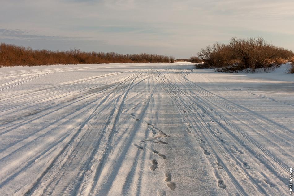 Река Мста. Следы от машин и снегоходов.