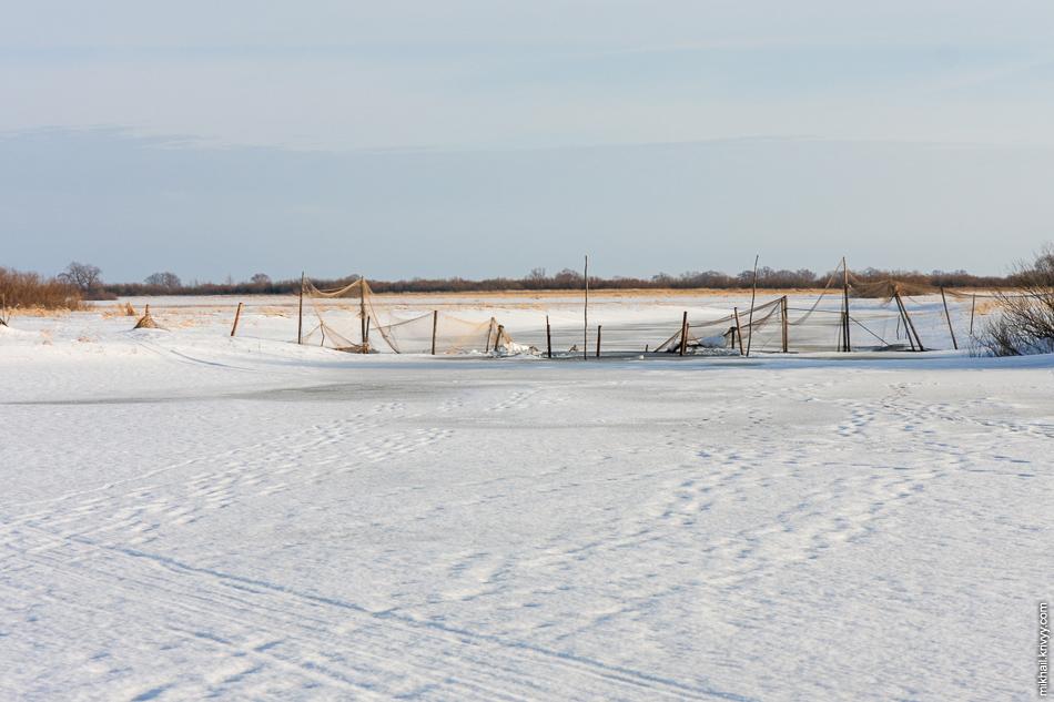 Охотничьи сетки на берегах Мсты.