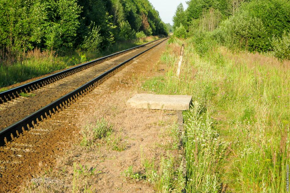 О.п. 83 км. Остатки платформы и второго пути (справа).