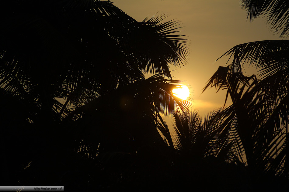 Закат и пальмы. В море закат не получилось сфоткать. Дымка была.