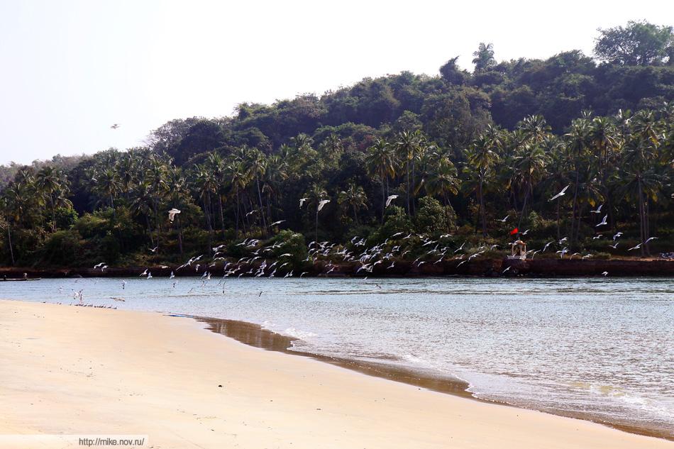 Южный край южного пляжа южного Гоа