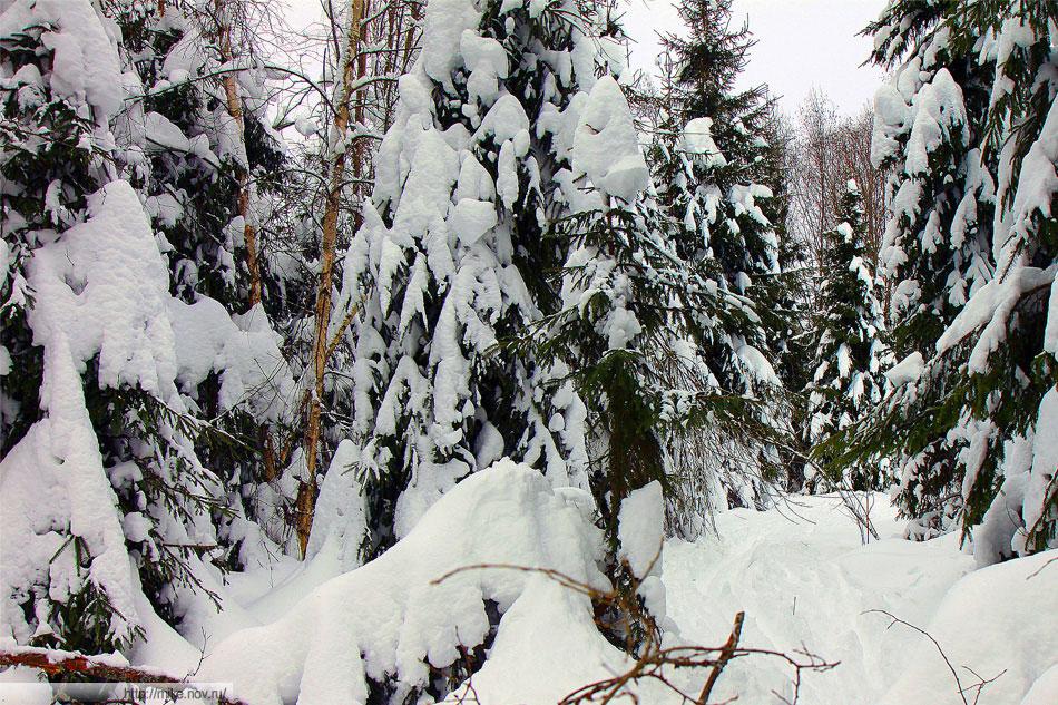 Снега столько, что лыжные палки проваливаются в снег почти целиком. Если снять лыжи то местами можно провалится по пояс.