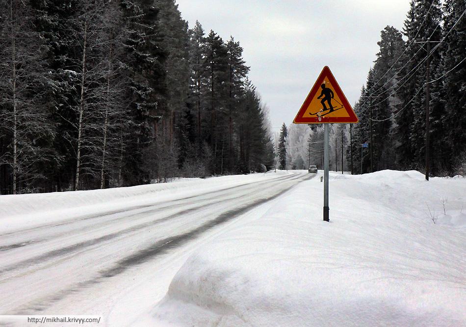 На пересечении шоссе и лыжни на зиму установлены специальные знаки