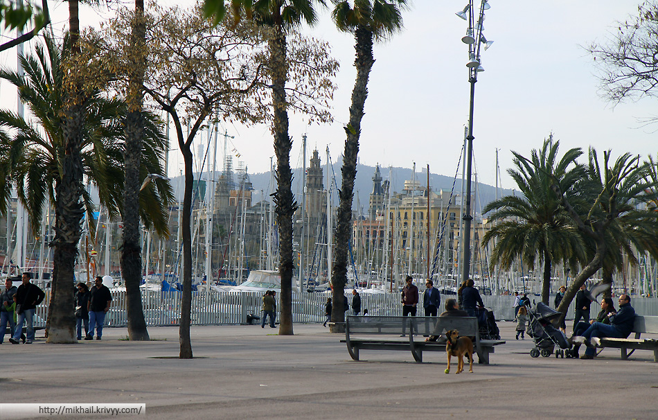Набережные порта Барселоны.