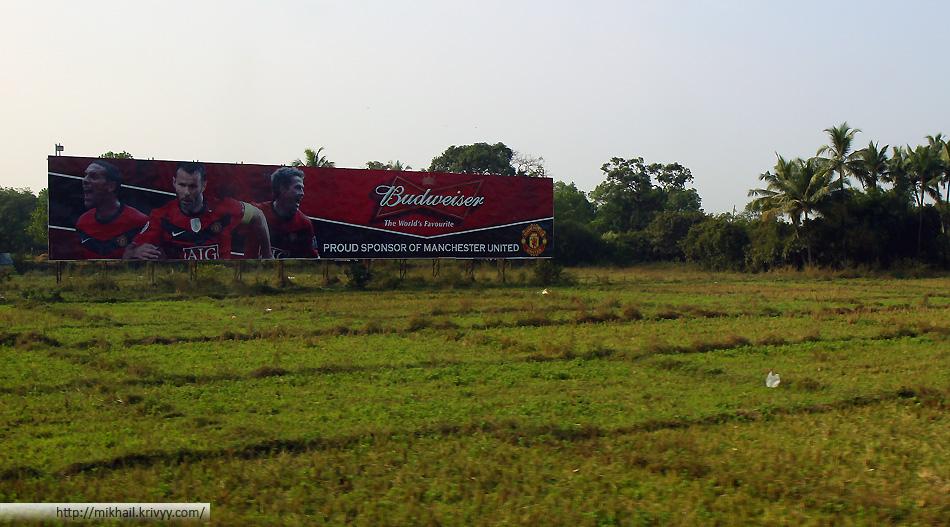 Вид из окна автобуса. Манчестер Юнайтед - и в рисовых полях Манчестер Юнайтед.