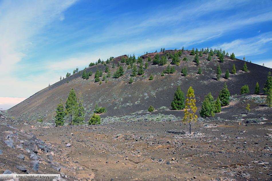 Кратер вулкана Самара. Кое где уже выросли редкие сосны.