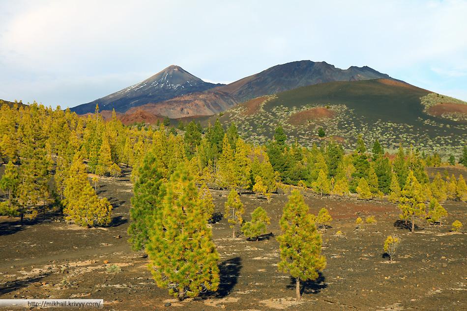 Пик Тейде (Teide) на закате. Вид с вершины вулкана Самара (Samara).