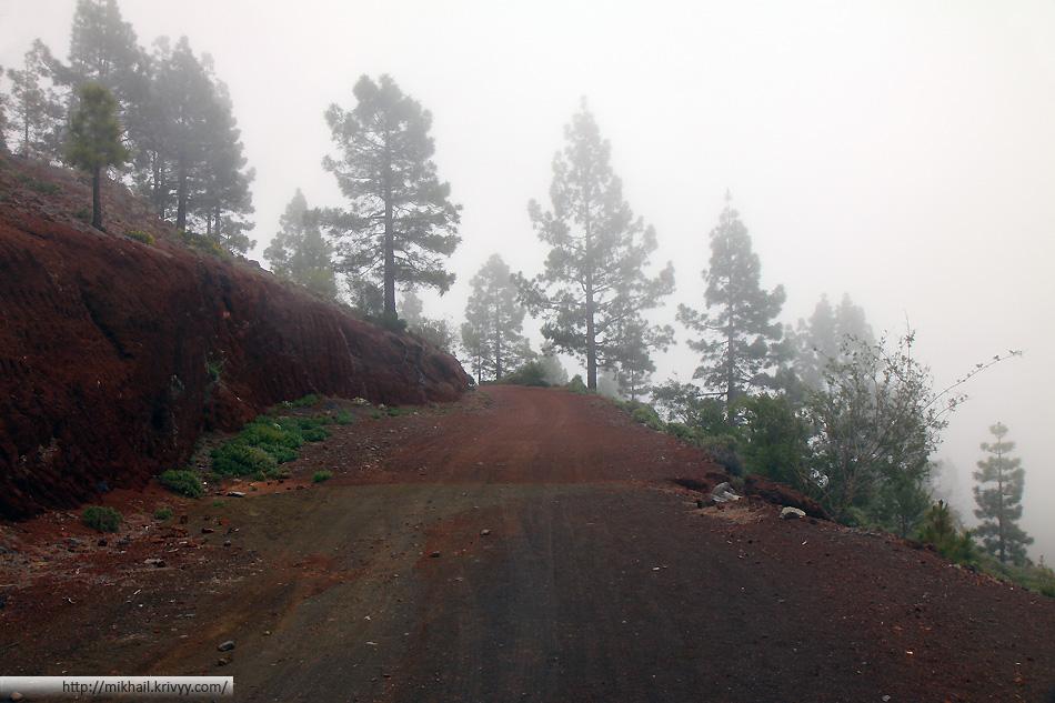 Первую часть пути мы шли по грунтовой дороге. Дорога закрыта для туристов. Пользуются ей только местные жители.