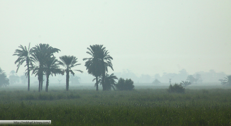 Так и не скажешь, что эта фотография сделана в Египте. Все таки, 96% территории Египта - пустыня. Раннее утро в долине реки Нил.