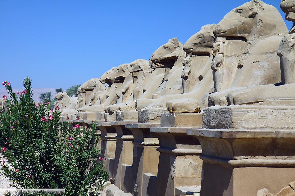 Аллея сфинксов-баранов у входа в Карнакский храм.