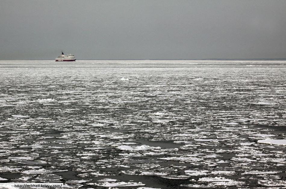 Паром Viking Line M/S Gabriella идет из Стокгольма в Хельсинки.