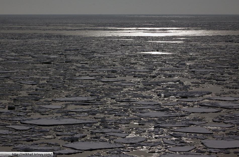 Финский залив в марте.