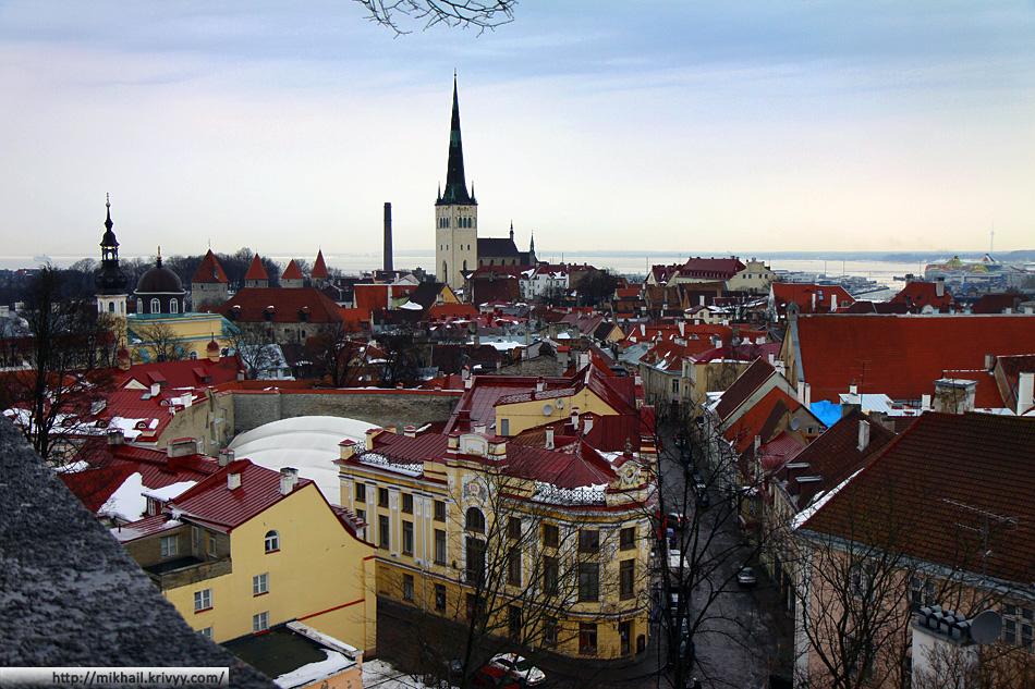 Крыши старого Таллина. Вид на Таллинский залив.