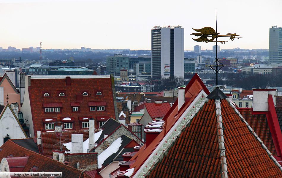 Крыши старого Таллина. Веселый флюгер.