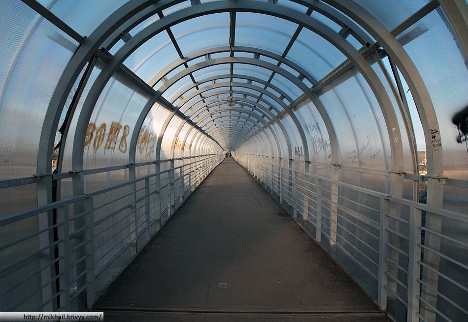 Тепличная оранжерея надземного перехода в Чудово.
