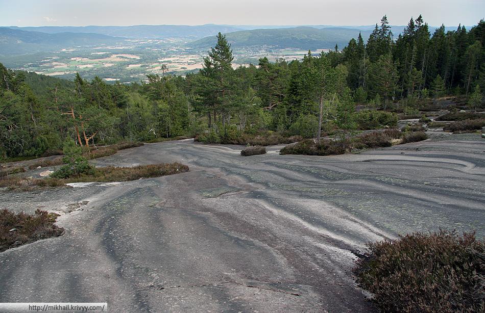 Вторая часть дороги идет через лес. Где-то на высоте 500 метров лес заканчивается, и начинается гранитное плато.