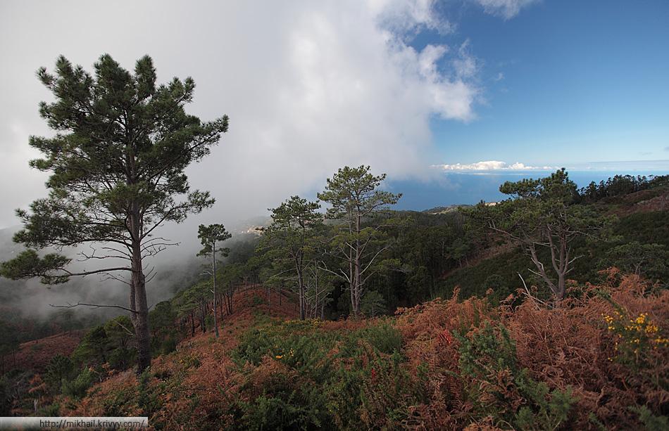 Подъем в горы со стороны Paul Do Mar. Южный склон острова Мадейра.