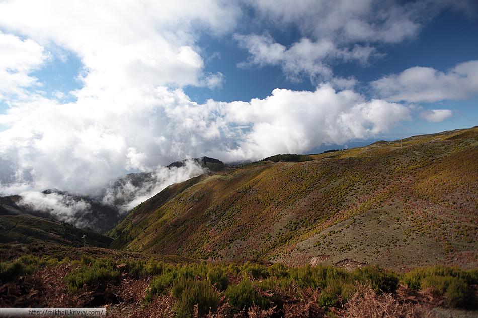 Мы забрались на самый верх. Облачность идеальная для фотографий. Это не самая высокая точка Мадейры. Все самые высокие горы в восточной части. Это западная.