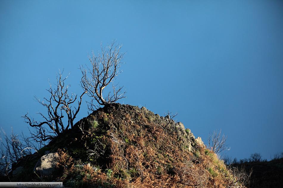 Горы Мадейры.