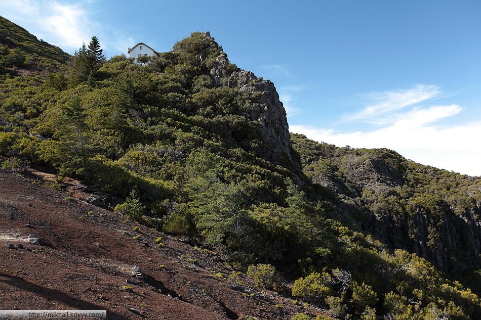 При подходе к завершающему подъему пейзаж резко изменился. На склоне опять появились кусты похоже на можжевельник.