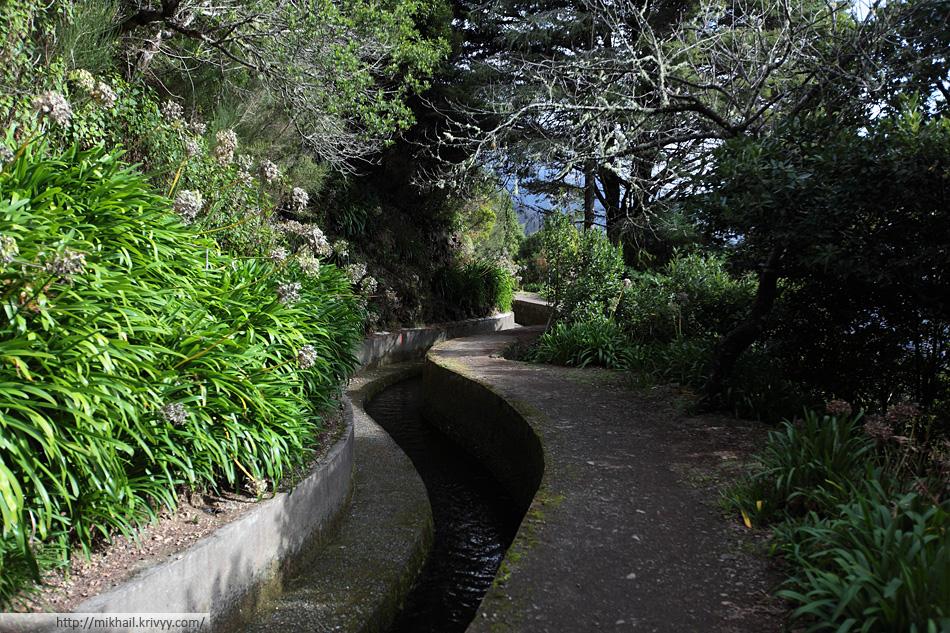 Акведук Levada do Norte. Южный склон. Это место больше напоминает ботанический сад, нежели просто склон горы.
