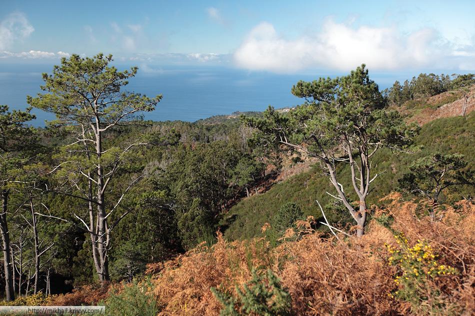 Южные склоны. Не смотря на высоту в 1100 метров, тут теплее и почти нет облачности.