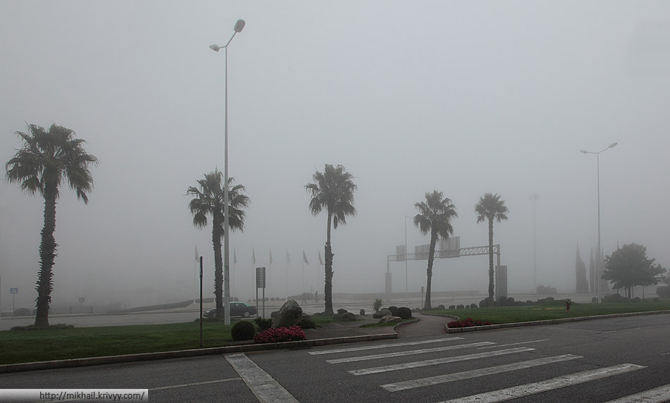 Вид на Лиссабон со стороны аэропорта :) После Хельсинки пальмы радуют даже при +15 и тумане.