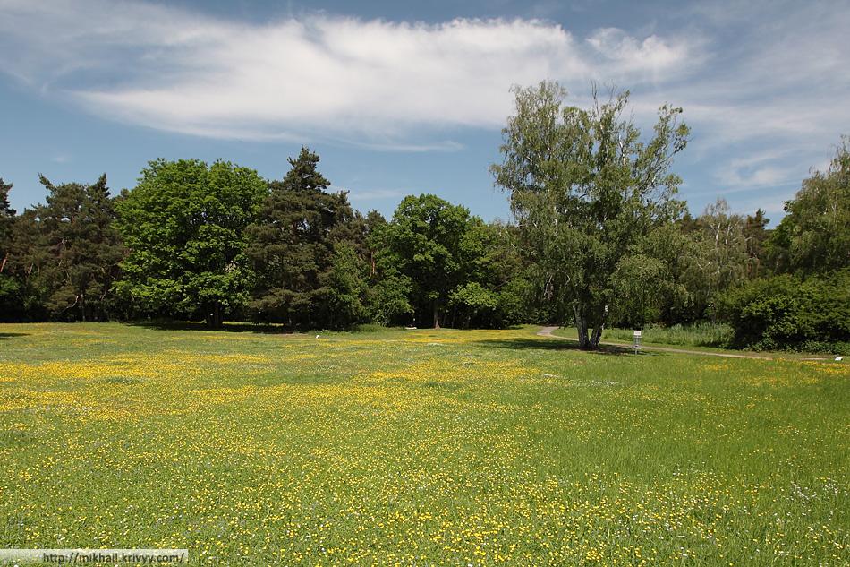 Ostpark. По сути, это лесопарковая зона. Местами в лесу вырублены полянки, на которых оставлены крупные благородные деревья - дубы, акации, клены, каштаны и т.п. В парке есть асфальтовые дорожки, но основная часть - грунтовые (из отсева).