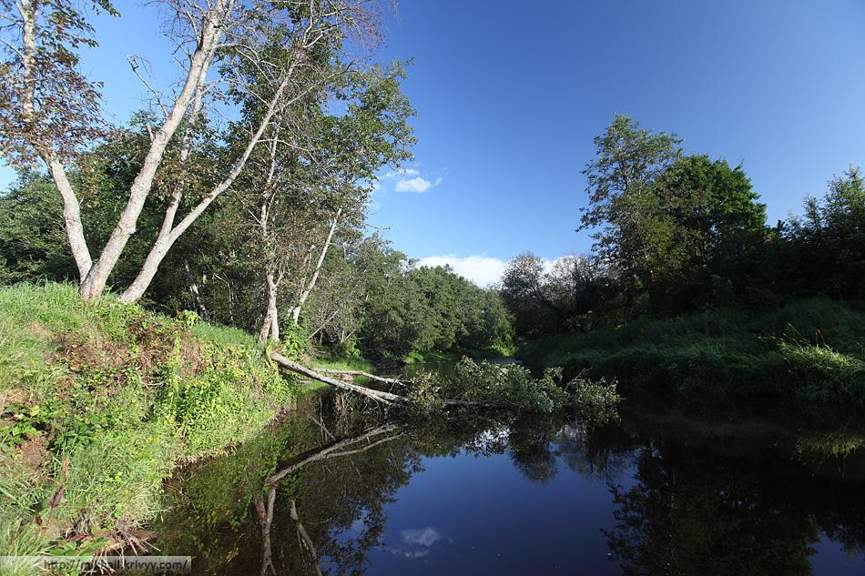 Река Гауя (Gauja) в районе поселка Леяциемс (Lejaciems)