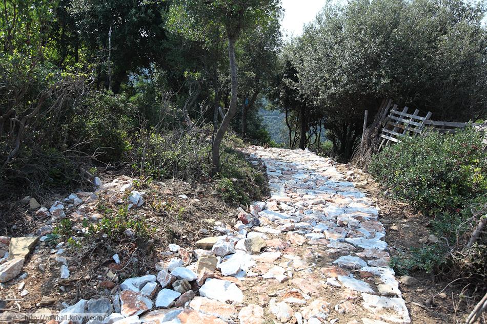 Выложенная камнем пешеходная дорожка. Идти не очень удобно, но можно.
