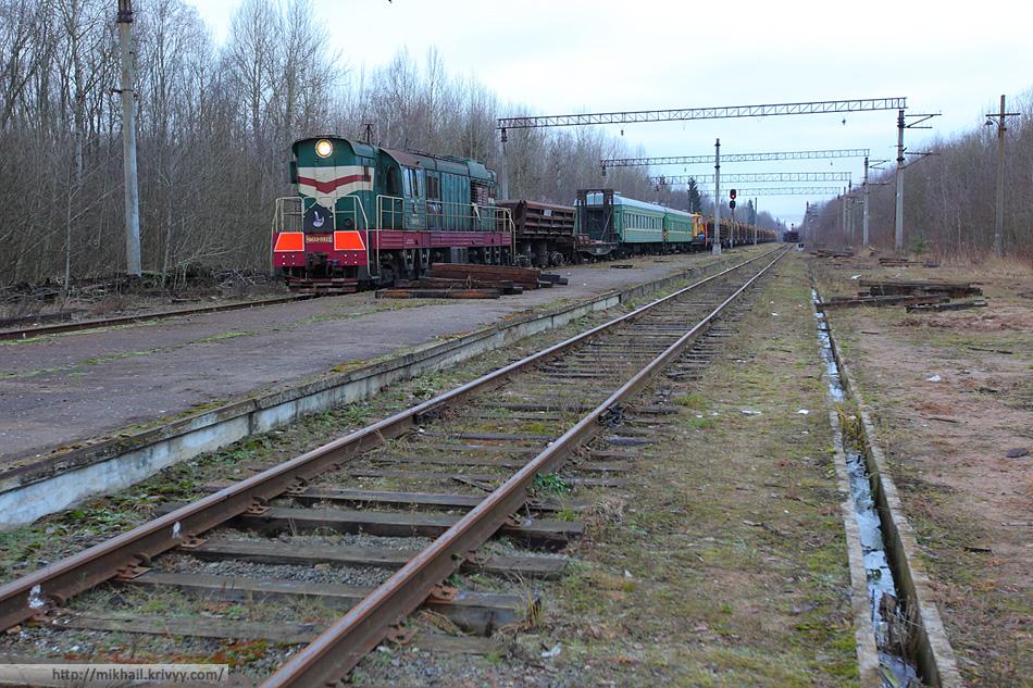 Тепловоз ЧМЭ3-5922 возвращается со смены с составом снятых рельсов. Станция Вяжище.
