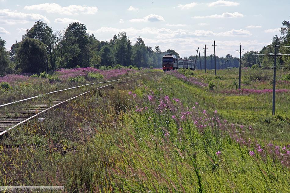 ТЭП70-0195 с поездом Луга - Великий Новгород, о.п. 14 км, перегон Батецкая - Луга-II