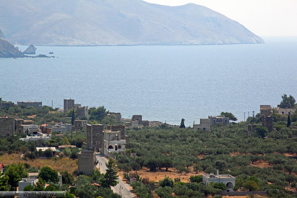 Оливки и выгоревшая трава. Полуостров Мани. Греция.