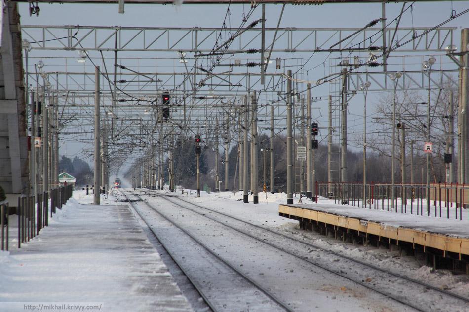 """Наш поезд на подходе к Окуловке. ЭВС1-07, """"Сапсан""""."""