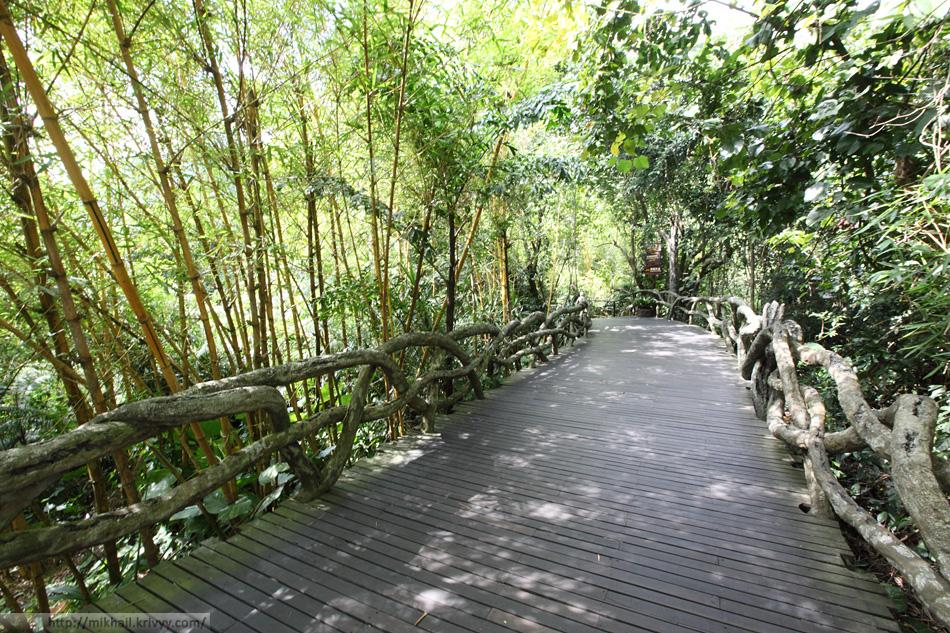 Деревянный настил. Парк Янода. Хайнань. Китай.