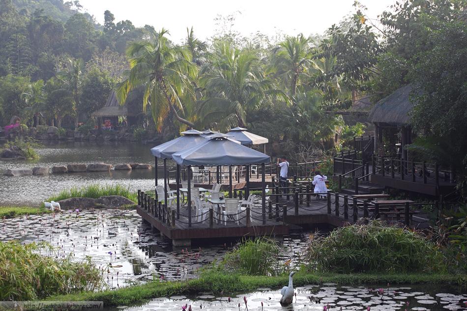 Общепит у центрального пруда. Гуси и утки ненастоящие, это же Китай. Национальный парк Янода.