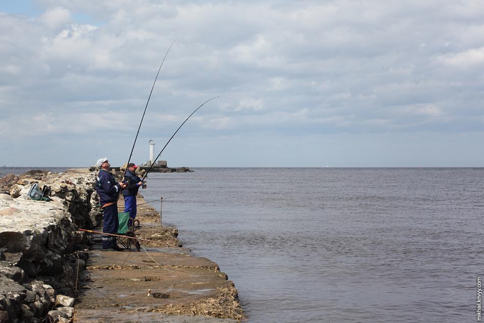 Рыбаков не так много. Вот-вот должна пойти на нерест салака, но в этот день ее еще нет.