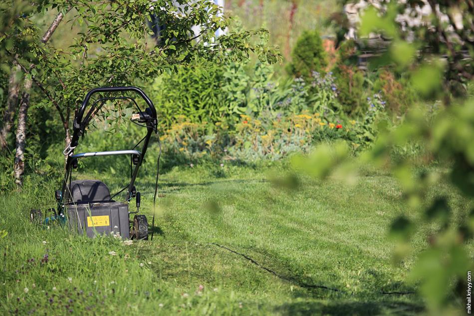 """Один распространенный """"финский"""" прием. Резкая граница между газоном и некошеным участком. Комбинация ухоженности и естественности."""