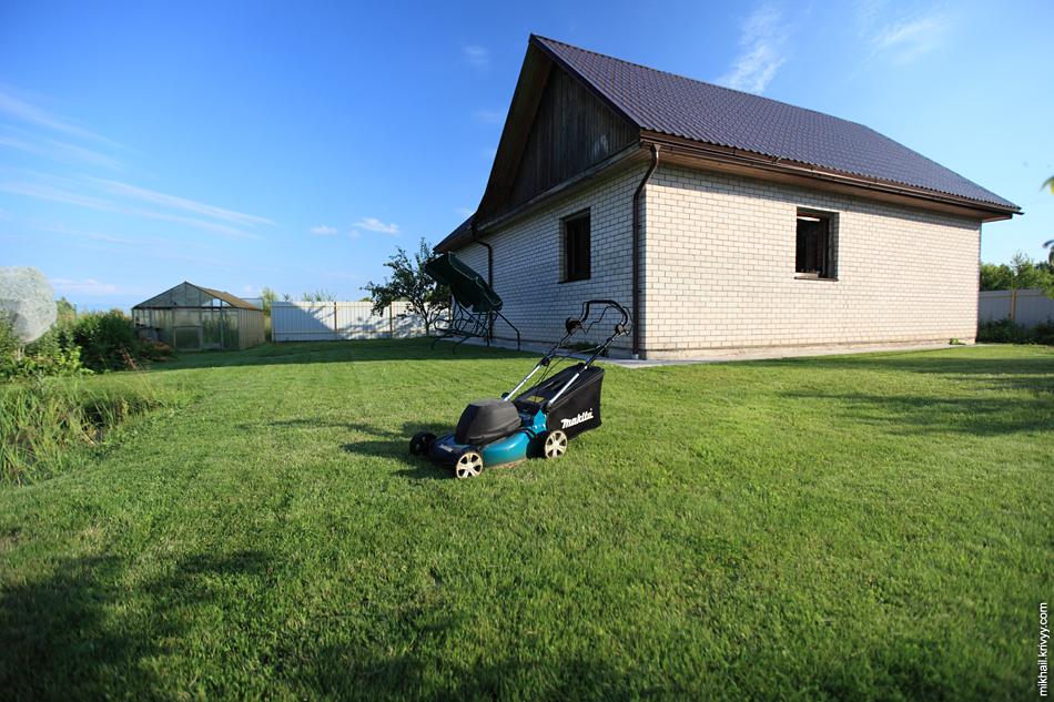 А вот так выглядит газон подстриженный газонокосилкой.