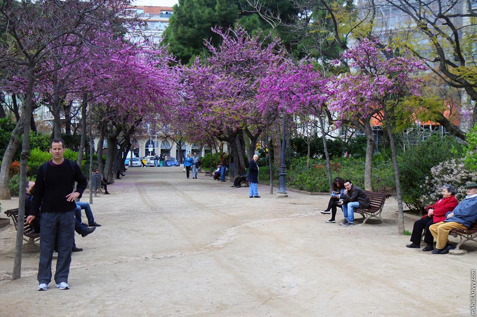 Парк Саграда Фамилия. Барселона. Испания.