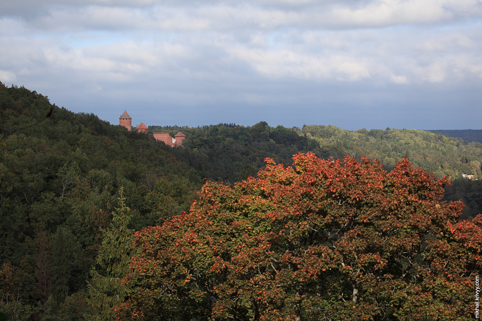 Турайдский замок. Высокий сезон в Сигулде будет в ближайшие две недели, во время золотой осени.