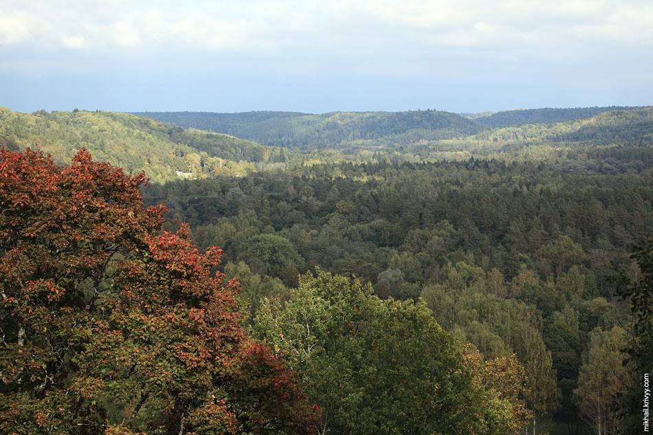Вид от Кримулдского замка на долину реки Гауя.