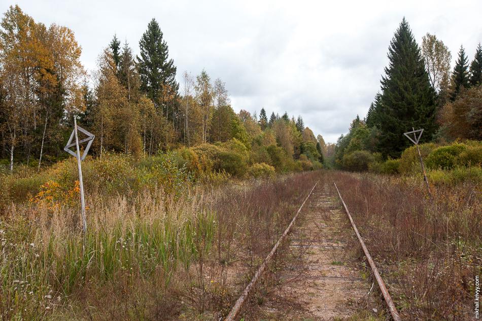 Линия Валдай Крестцы в районе бывшей о.п. 35 км.