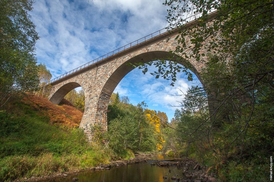Железнодорожный мост через реку Ярынья. Линия Валдай - Крестцы. Новгородская область.